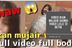 Viral Link Asli Ikan Mujair Viral 13 Detik