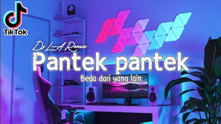 Apa Itu Arti Pantek? Arti Pantek Viral Di Tiktok